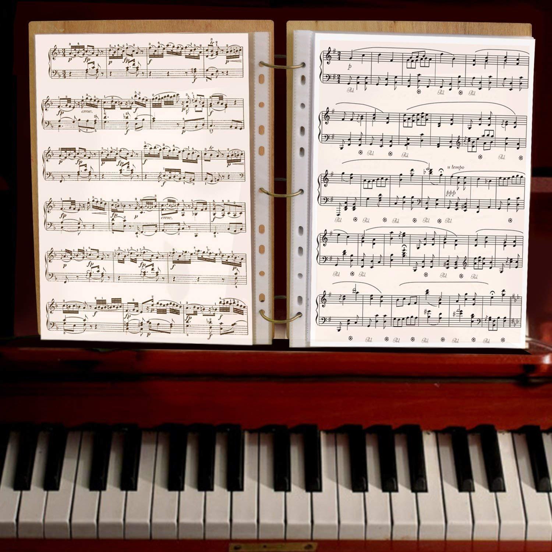 PETAFLOP Cartelle di File espandibili Albero Musicale A4 Letter Document Organizer 50 Tasche