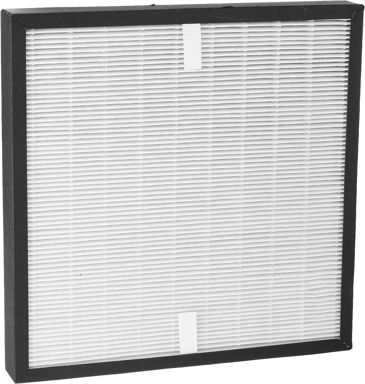 DeLonghi 5513710011 - Accesorio para purificador de aire: Amazon ...