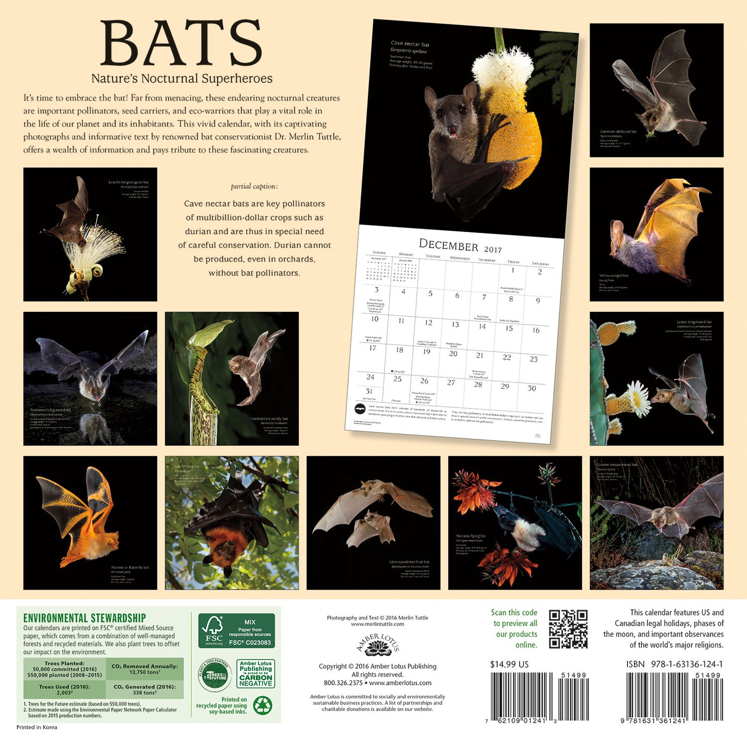 Bats 2017 Wall Calendar Natures Nocturnal Superheroes Merlin D Animal Cell Diagram Labeled Search Results 2015 Tuttle Amber Lotus Publishing 9781631361241 Books