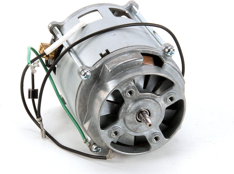 Waring 029321 Motor para Margarita locura licuadora: Amazon.es ...