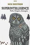 Superintelligence: Paths, Dangers, Strategies