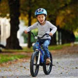 Royalbaby RB18B-6B BMX Freestyle Kids Bike, Boy's