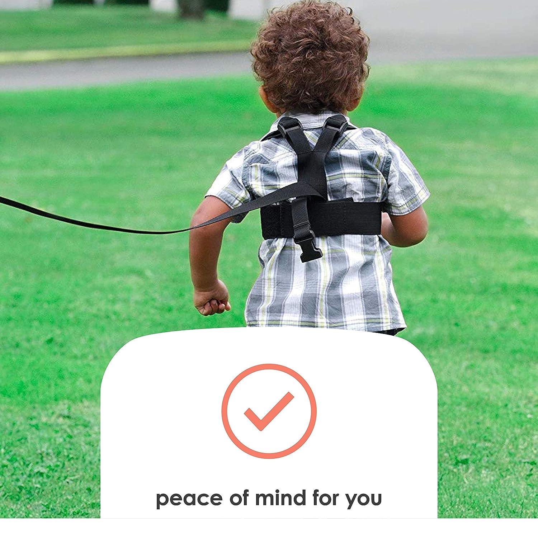 Diono - Correa para niños con arnés (cinta de 1,2 m), color negro: Amazon.es: Bebé