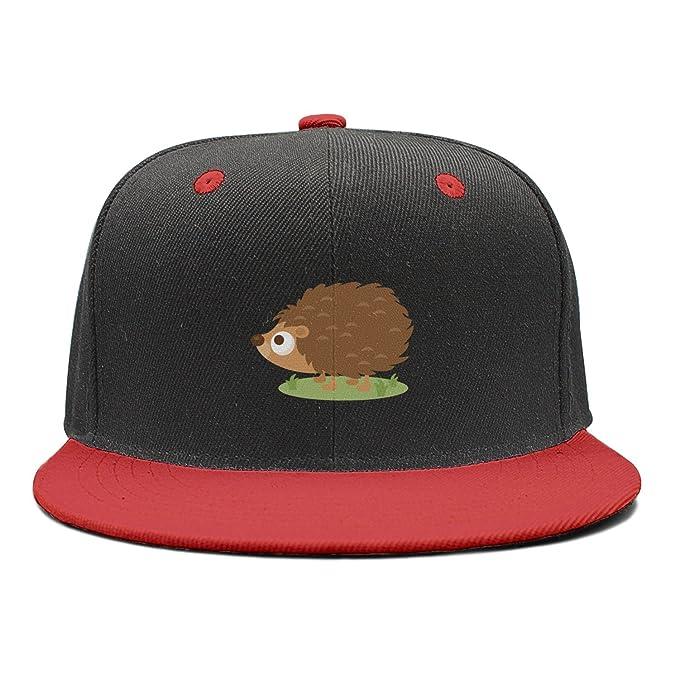 AKDJDS Large Hedgehog Boy Rock Punk Snapback Hats Baseball Caps at ... 7f539c858e0