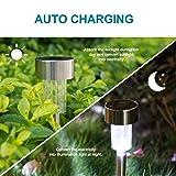Dumax Solar Garden Lights Outdoor 12 Pack, Solar