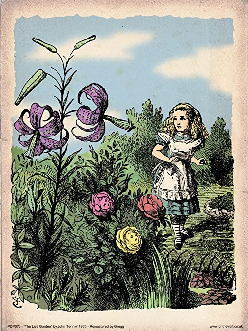 Amazon Com Alice In Wonderland Flower Garden Vintage Art Print Poster 40x30cm Pdp 076 Posters Prints
