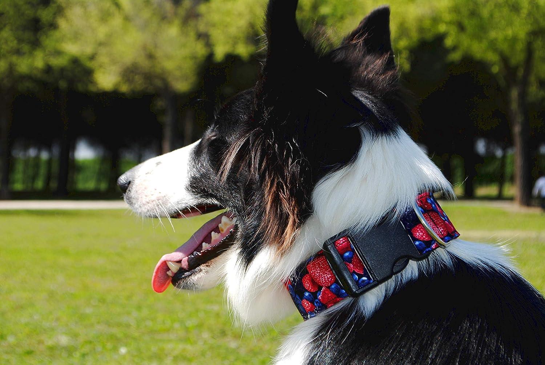 candyPet Collar Click para Perros - Modelo Frutos del Bosque ...