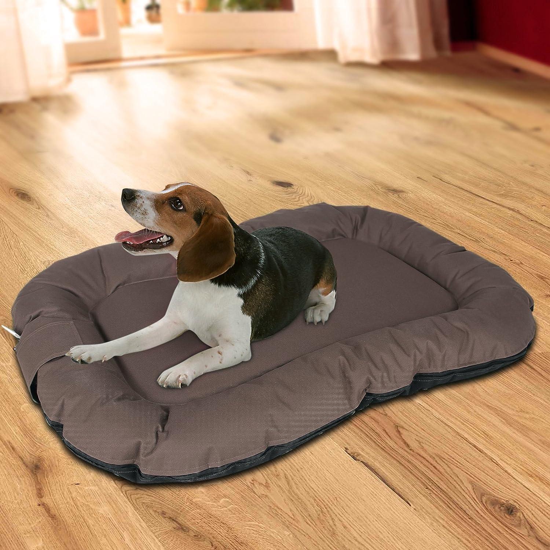 Songmics Cómodo Casa para mascotas, Cama para perros Perrera Marrón 100 x 70 x 15 cm PGW70Z: Amazon.es: Hogar