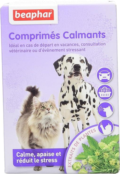 Beaphar – Comprimidos calmantes para Perros y Gatos – 20 Comprimidos: Amazon.es: Productos para mascotas