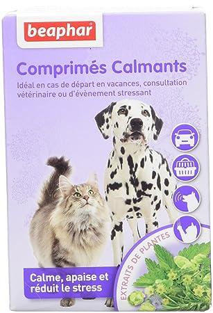 Beaphar - Pastillas calmants - perro y gato - 20 Pastillas: Amazon.es: Productos para mascotas