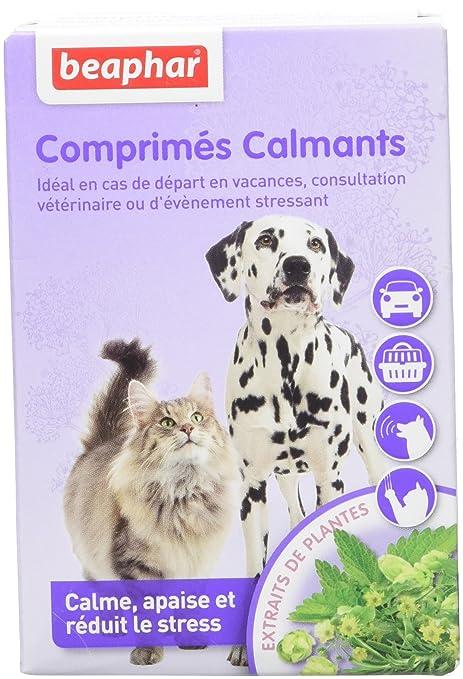 Beaphar – Pastillas calmants – perro y gato – 20 Pastillas