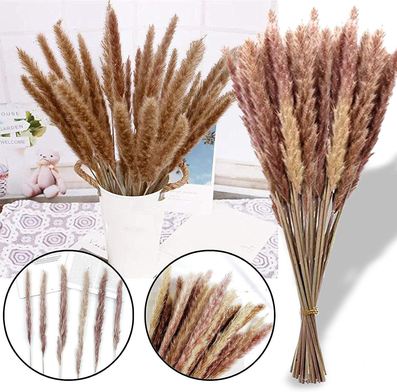 White 15 Pcs /& Brown Pampas 15 Pcs for Flower Arrangements Wedding Home Boho Decor Natural Dried Pampas Grass 30 Stems 20 in Length