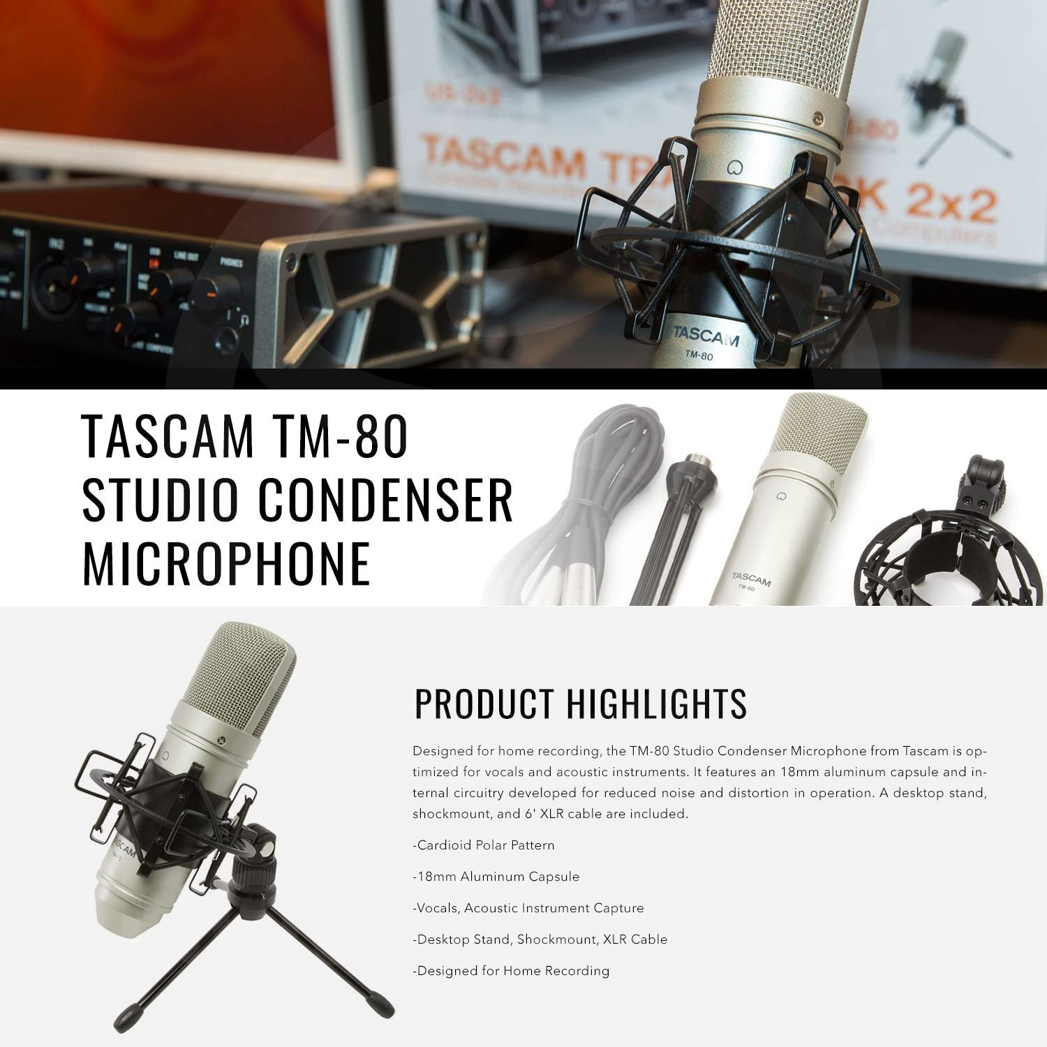 Tascam TM-80 Large Diaphragm Condenser Microphone with Blue Icicle USB Microphone Interface for Computer and Premium Accessory Bundle