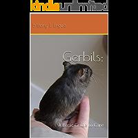 Gerbils: A Basic Guide To Care
