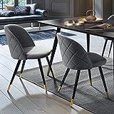 FurnitureR Juego de 2 sillas de Comedor de Terciopelo Sillas de Ocio Modernas de Mediados de Siglo Sillas Laterales…