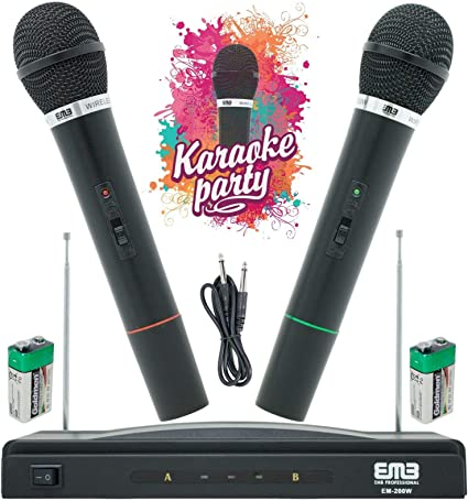 Professional Wireless Dual Frequency Dynamic Microphone 2 Mic /& Receiver System