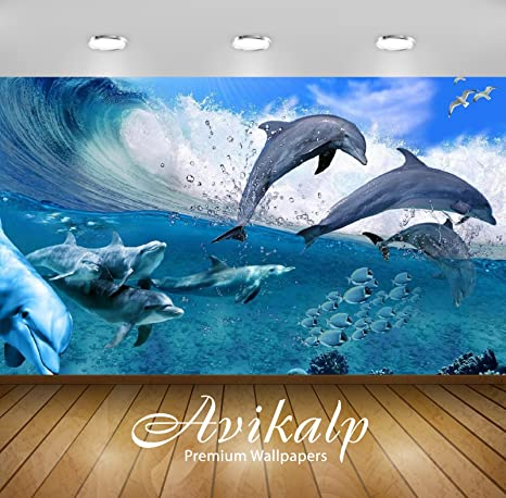Buy Avikalp Exclusive Awi2698 Happy Dolphins Game Sea Fish