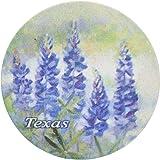 Thirstystone Stoneware Texas Bluebonnet Coaster, Multicolor