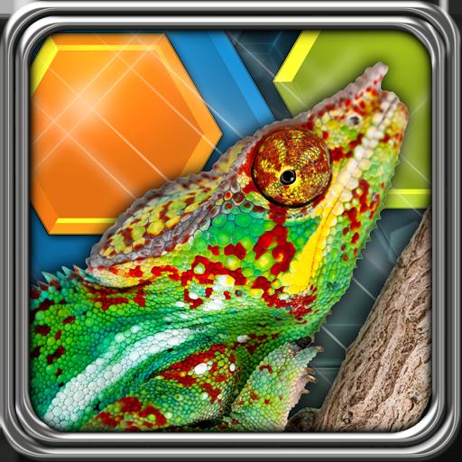 HexLogic - Reptiles ()