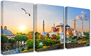 City Landmark Hagia Sophia,Canvas Wall Art for Living Room Famous Building in the Evening Sun Rays Pictures Print on Canvas Wall Artwork Landscape Canvas Art Picture Print Framed Decor (48x24 Inch)