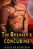 The Breaker's Concubine (The Concubine Chronicles Book 1)