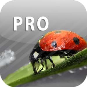 ColorUp Pro