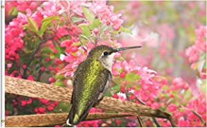 ShineSnow Spring Summer Hummingbird Bird with Pink Floral Apple Flowers 3x5 Feet Flag, Polyester Double Stitched with Brass Grommets 3 X 5 Ft Flag for Outdoor Indoor Home Decor