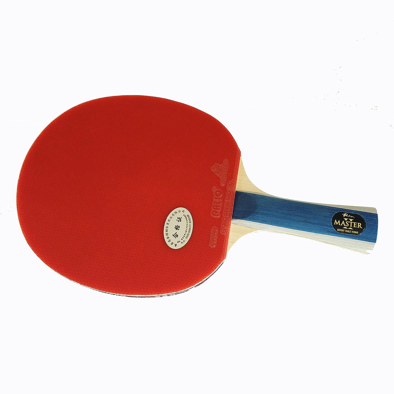 Racchetta da ping pong Palio Master 2 con custodia