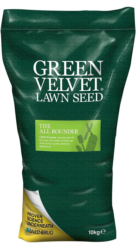 Green Velvet - Semillas para jardinería: Amazon.es: Jardín
