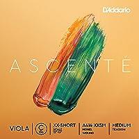 D'Addario Ascenté. Cuerda C para viola, escala extraextracorta