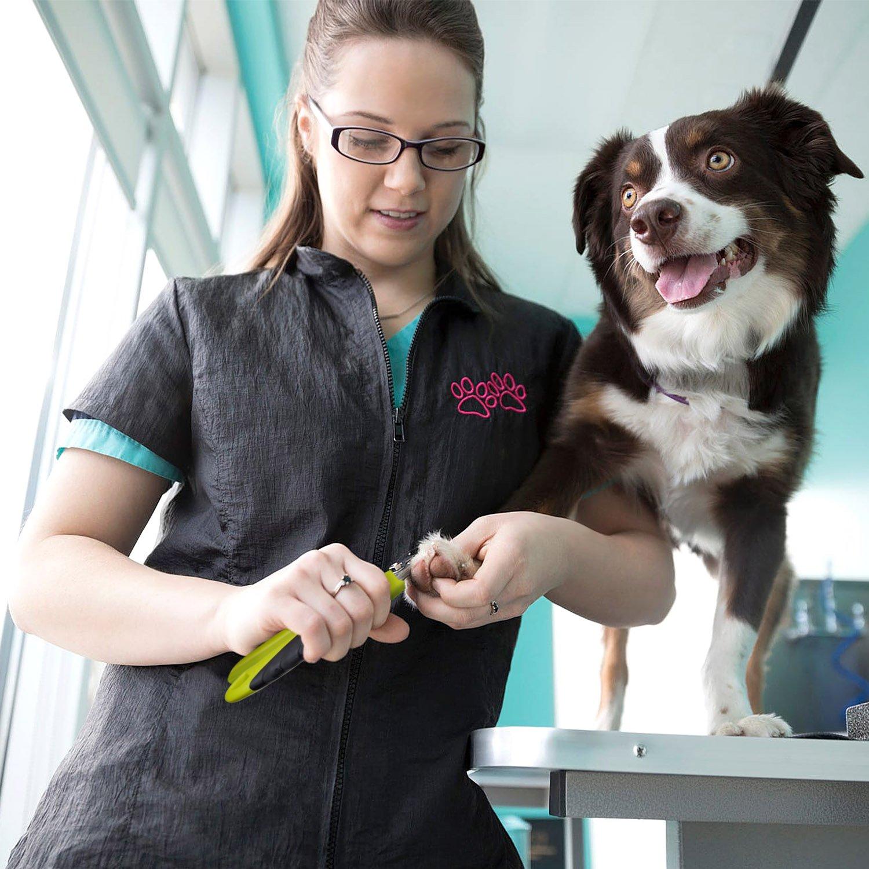 Cortauñas Perro y Lima Uñas Profesional de Acero Inoxidable para Perros Medianos y Grandes