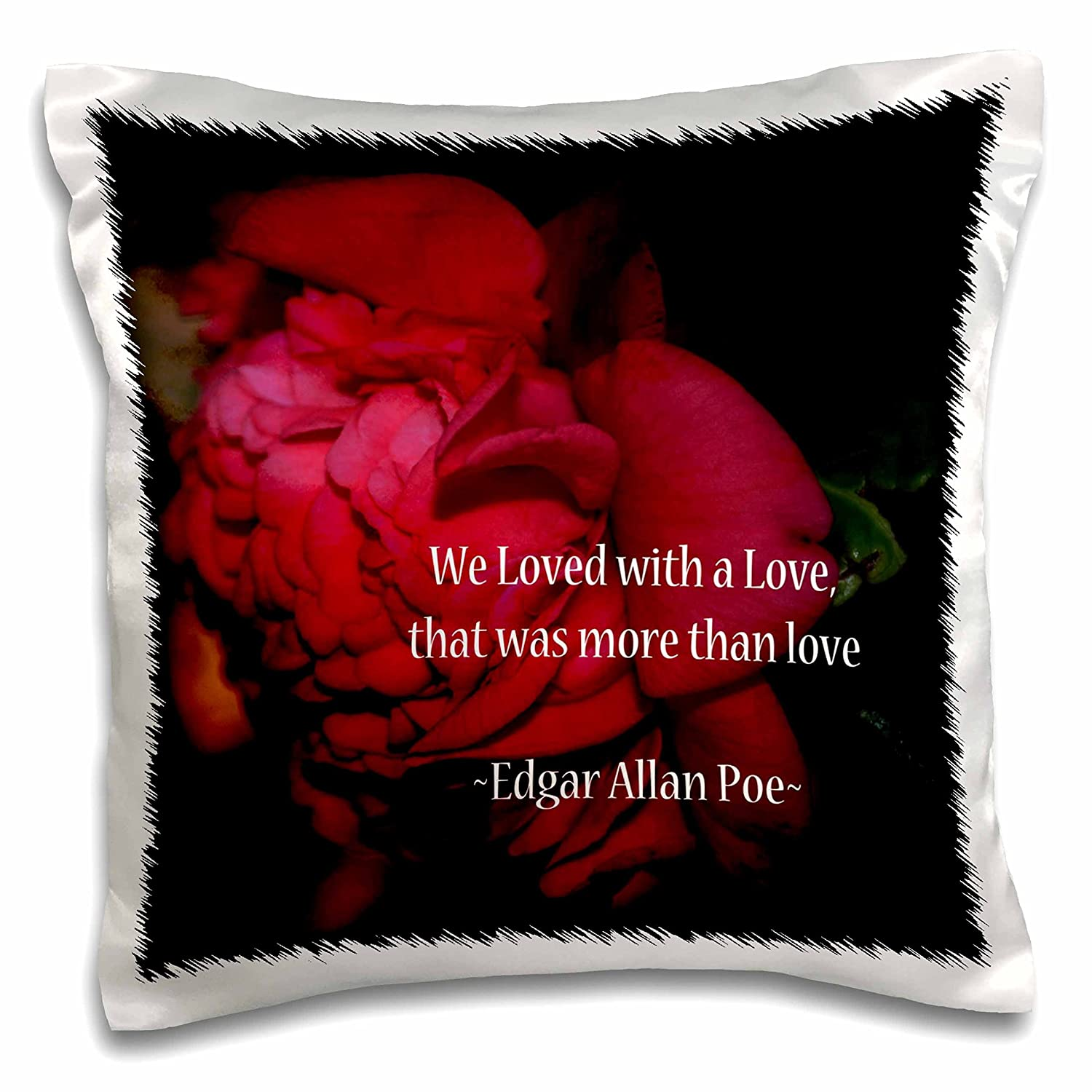 3dRose WhiteOaks Photography and Artwork - Inspirational - More Than Love is an Inspirational Quote by Edgar Allan Poe - 16x16 inch Pillow Case (pc_265330_1)