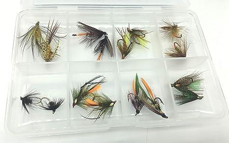 Irish moscas húmedas 16 moscas juego en libre mosca caja tamaños 10-14 Excelente calidad trucha vuela: Amazon.es: Deportes y aire libre
