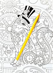 Amazon.com: Creative Haven Fanciful Foxes Coloring Book