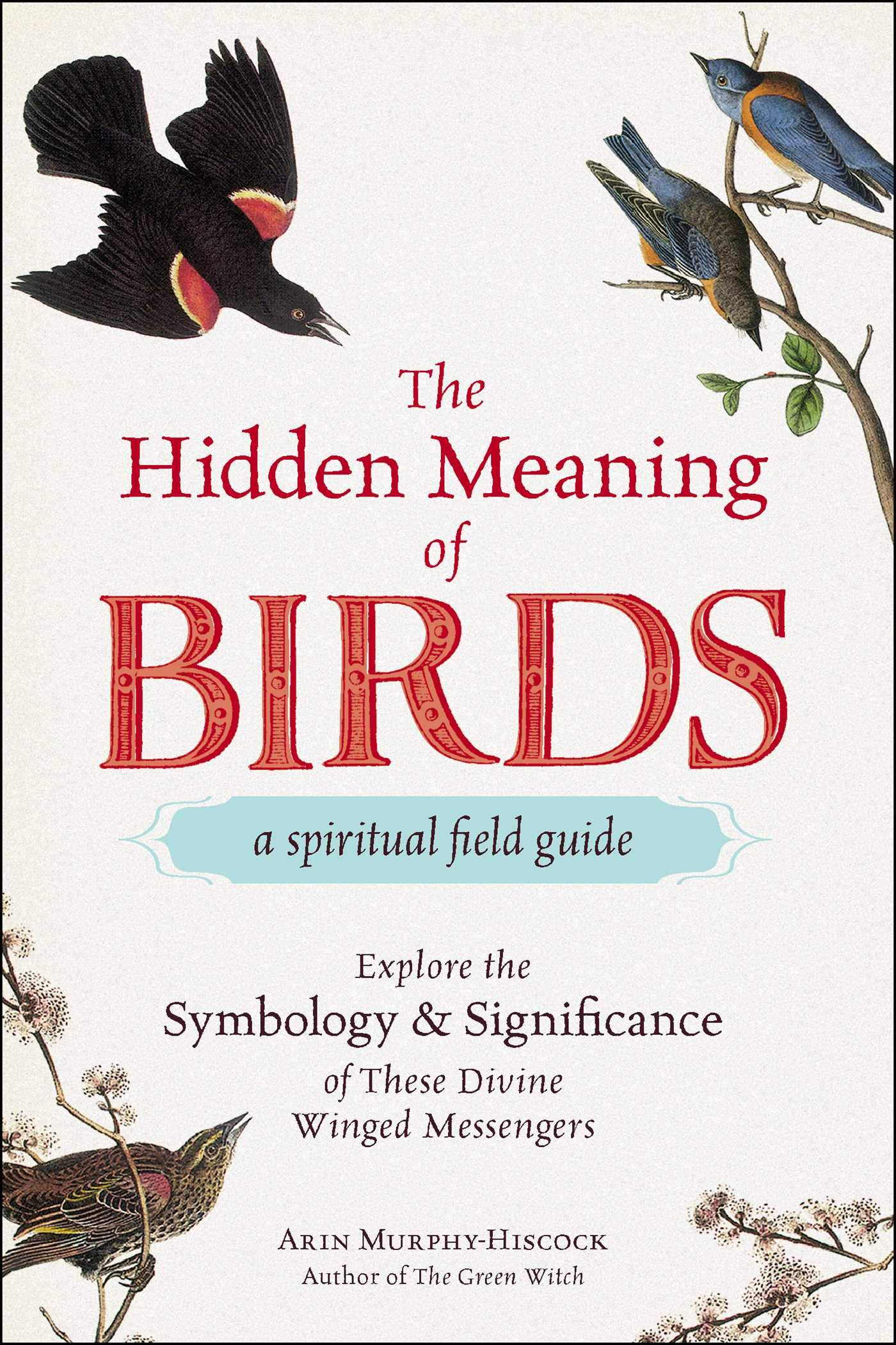 The Hidden Meaning of Birds--A Spiritual Field Guide Explore the Symbology and Significance of These Divine Winged Messengers