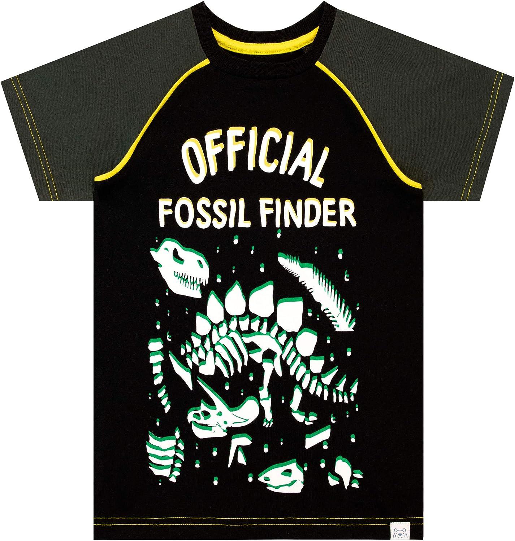 Harry Bear Camiseta de Manga Corta para ni/ños Dinosaurio