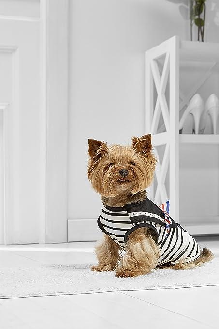 Amazon.com : Toy Dog Marine For Yorkie Maltese Chihuahua ...