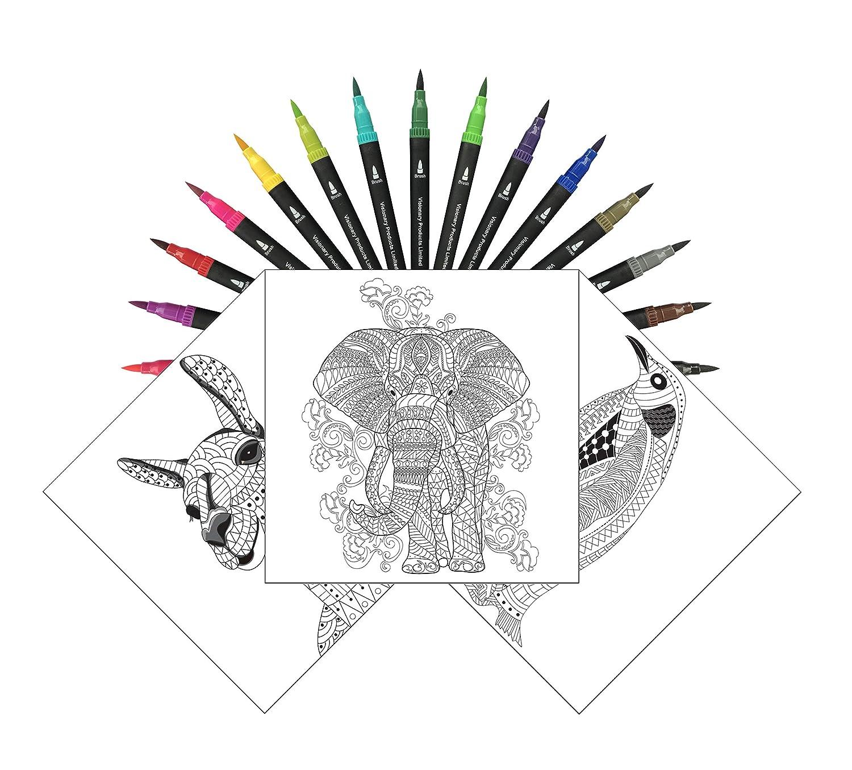 Adult Coloring Book with Dual Tip Brush Pens Bundle | 24 ...