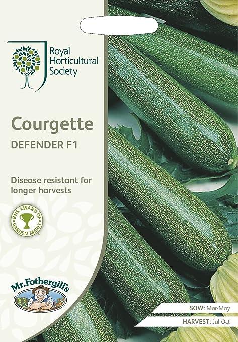 Légumes-Courgette-Defender 10 graines