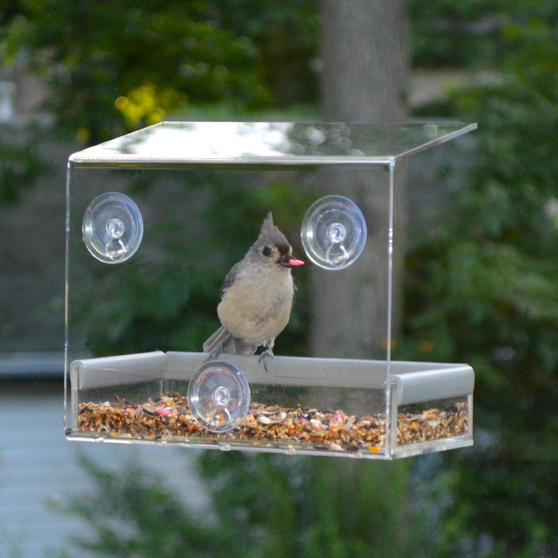 Window bird house - Amazon Com Petfusion Tranquility Window Bird Feeder In Premium Lucite Acrylic I Removable Tray Ii 3 Perches Patio Lawn Garden