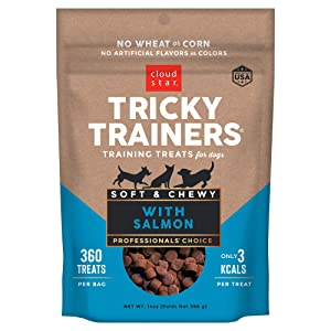 Cloud Star Tricky Trainers Chewy Dog Treats – Whole Grain Soft for Training, 14 oz Salmon, 2 PACK