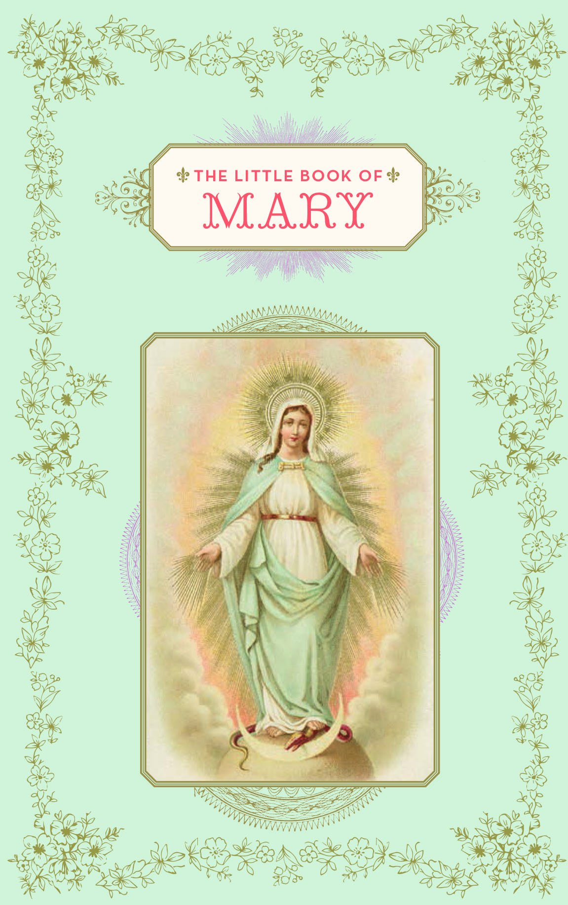 The Little Book of Mary ebook