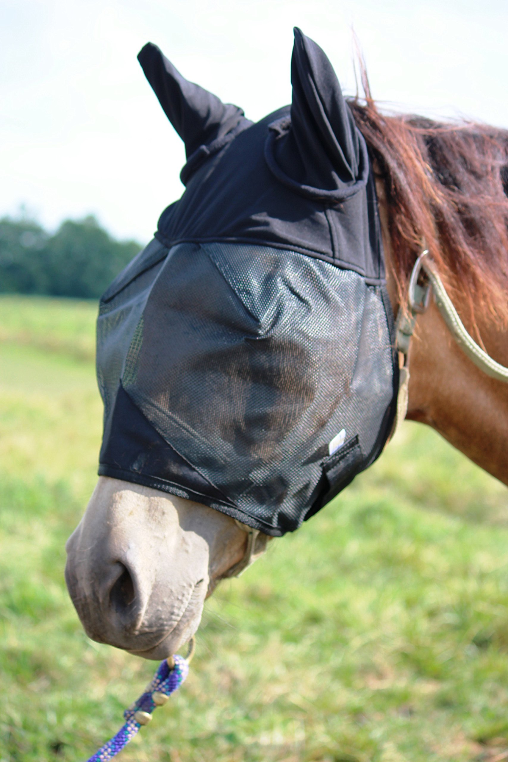 Horse Fly Mask with Ears, All Around Barn, Stable, Pasture, Trail Riding Fly and Sun Protection - Style: with Ears - Size: Horse