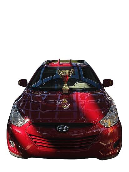 BLACK Hoodaments Bull Horns for Cars