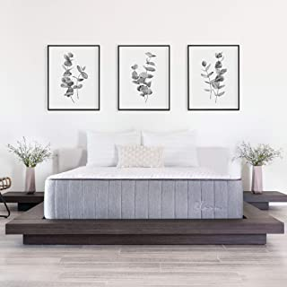 product image for Brooklyn Bedding Bloom 14-Inch Talalay Latex Hybrid Mattress with Organic Cotton Cover, Cal King Medium