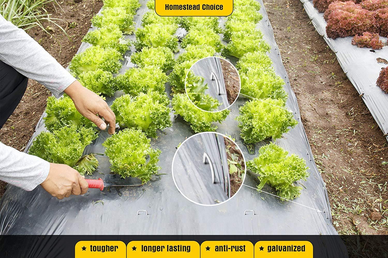 Homestead Choice - Grapas de jardín galvanizadas DE 15, 2 cm ...