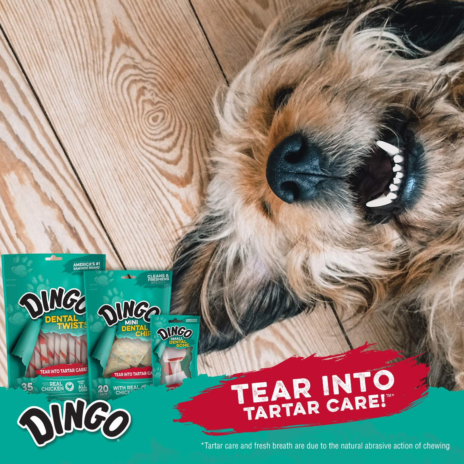 Dingo Tartar And Breath Dental Sticks For All Dogs 48 Count Amazon Lotong L1 Bluetooth Headset Pet Supplies