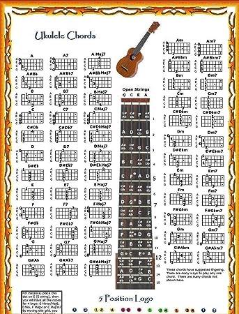 Ukulele ukulele chords hand position : Amazon.com: UKULELE CHORDS POSTER & NOTE LOCATOR & 5 POSITION LOGO ...