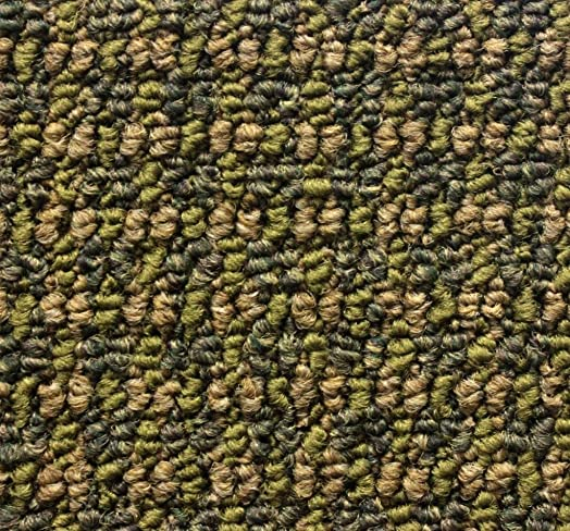 Koeckritz 8 x12 Tahoe Rain Forest Indoor Durable Level Loop Area Rug for The Home with Premium Bound Polyester Edges.