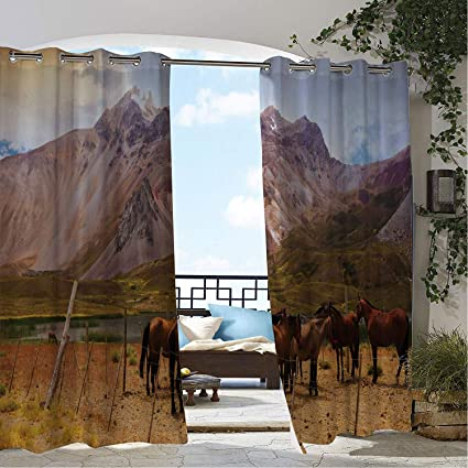 Amazon.com: Linhomedecor Patio Waterproof Curtain Argentina ...